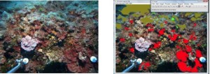 Schermata 2015-09-17 alle 12.13.02