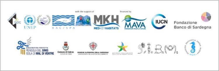 Loghi partner e sponsor MSW