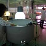 fondazione-imc-laboratorio-acquacoltura-avannotteria-attività-produttive-15