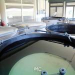 fondazione-imc-laboratorio-acquacoltura-avannotteria-attività-produttive-19