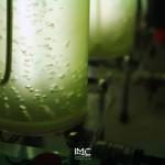 fondazione-imc-laboratorio-microalghe-attività-produttive-07