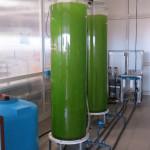 biomassa microalgale IMC