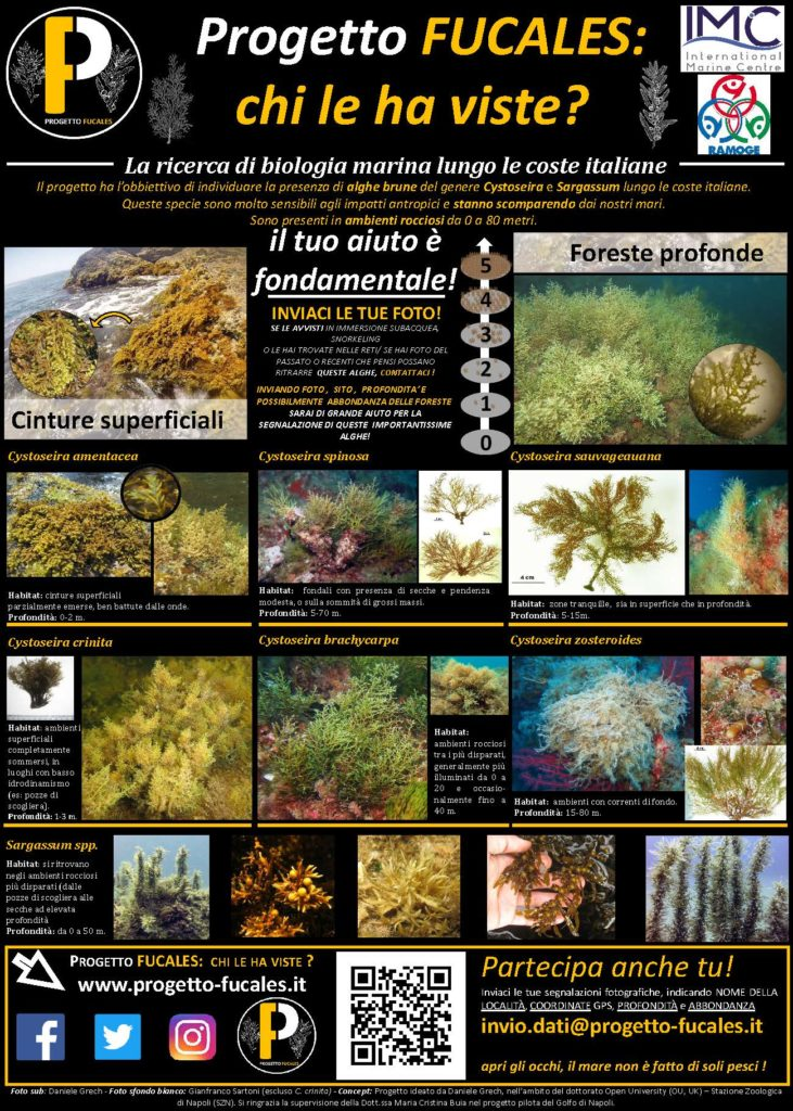 PROGETTO FUCALES ITALIANO 2019 Ricerca, formazione e divulgazione su alghe brune formanti habitat delle coste italiane.
